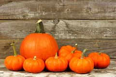 Autumn pumpkins over an old wood background Stock Photos