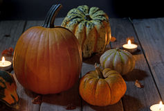 Autumn Pumpkins and Squash Stock Images
