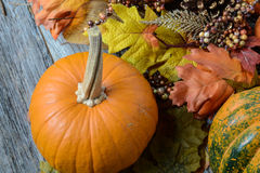 Autumn Pumpkins surrounded by leaves Royalty Free Stock Photos