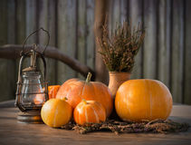 Autumn Pumpkins, Thanksgiving day Background, Halloween Royalty Free Stock Photography
