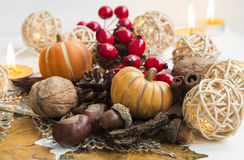 Autumn pumpkins, walnuts,acorns,chestnuts and decorations Royalty Free Stock Images