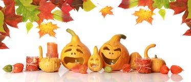 Autumn pumpkins on white Stock Image