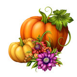 Autumn Pumpkins With Seasonal Flowers, Illustration Isolated On White Background Royalty Free Stock Image