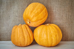 Autumn pumpkins on a wooden background in a rustic style Royalty Free Stock Image