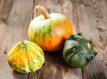 Autumn pumpkins Stock Photography