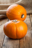 Autumn pumpkins Stock Image