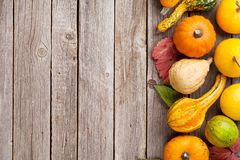 Autumn pumpkins on wooden table Stock Images