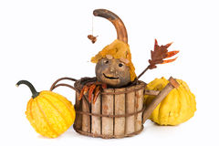Autumn puppet Royalty Free Stock Image