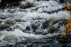 Northern Purity. Photo of a stream in Finnish Lapland Stock Photography