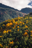 Autumn in pyrenees Royalty Free Stock Photos