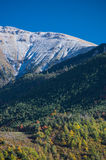 Autumn in pyrenees Stock Image