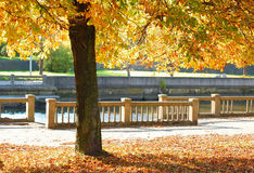 Autumn Quay Royalty Free Stock Photo