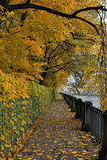 Autumn quay Stock Photography
