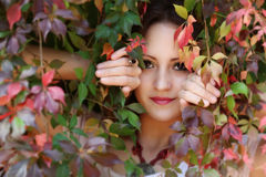 Autumn queen. Young redhead woman next to the autumn colorful leaves stock image