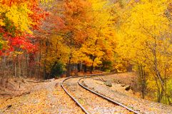 Autumn railroad Royalty Free Stock Photos