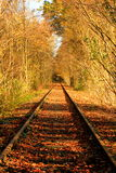 Autumn railtrack. Old disused forest rail track taken in the autumn Royalty Free Stock Photo