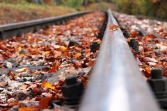 Autumn Railway Fotos de Stock