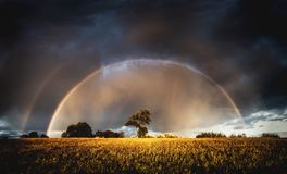 Autumn rain in the evening and full rainbow in the fields above trees royalty free stock photos