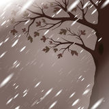 Autumn rain with tree silhouette Royalty Free Stock Image