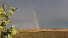 Autumn rainbow on farm fields stock video footage