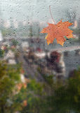 Autumn, rainy city through a window with raindrops. Stock Image