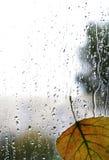 Autumn rainy day on glass with leaf Royalty Free Stock Photos