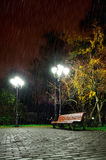 The autumn rainy night in the park Royalty Free Stock Photos