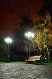 The autumn rainy night in the park Royalty Free Stock Photos