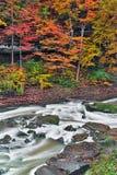 Autumn Rapids stockfoto