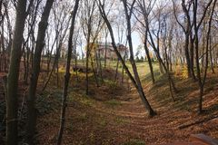 Autumn ravine with trees. Dotted with yellow and red leaves. Through the trees the house looks out. Mezhyhirya, Kiev Stock Images