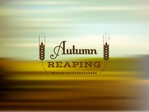 Autumn reaping. Vector blurred background with text, autumn reaping Royalty Free Stock Photo