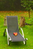 Autumn red apples on chair in garden Stock Image