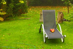 Autumn red apples on chair in garden Royalty Free Stock Images