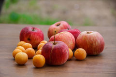 Autumn. Red apples fall to the ground. Stock Photos