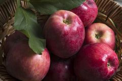 Fresh natural red apples in a basket. royalty free stock photography