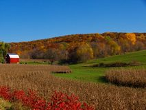 Autumn Red Barn. A newly painted red barn surrounded by colorful autumn Wisconsin hills Royalty Free Stock Photo