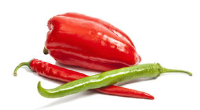 Autumn red and green pepper Royalty Free Stock Image