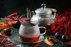 Autumn red hibiscus tea Stock Photography