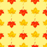 Autumn Red Maple Seamless Pattern Photos libres de droits