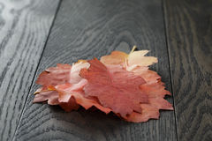 Autumn red oak leaves on old oak table Stock Photo