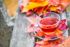 Autumn red tea. Cup of tea with autumn leaves on wooden board Royalty Free Stock Image