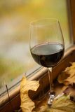 Autumn red wine Royalty Free Stock Photos