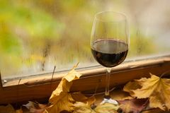 Autumn red wine Stock Photography