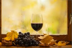 Autumn red wine Stock Photos