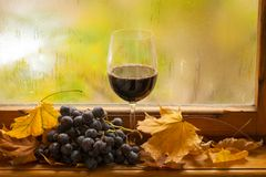 Autumn red wine Royalty Free Stock Image