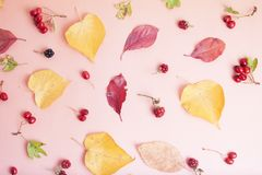 Autumn red and yellow leaves background with copy space. Fall concept. Top view. Autumn red and yellow leaves background with copy space. Fall concept stock photo