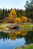 Autumn Reflaction Fotografie Stock