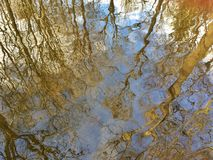Autumn reflection in water Stock Image