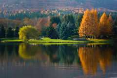 Autumn with Reflecions in Lake Royalty Free Stock Images