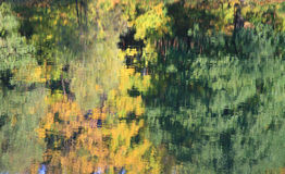 Autumn reflection Royalty Free Stock Photos